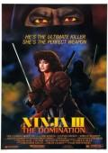 Ninja 3: Dominacja