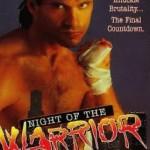 Noc wojownika