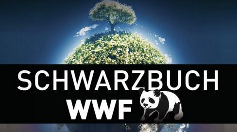 Czego nie wiemy o WWF