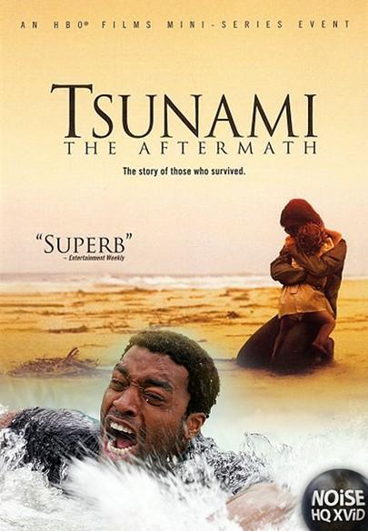 Tsunami: Po katastrofie