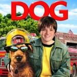 Strażacki pies