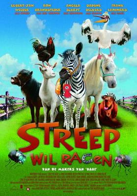 Zebra z klasą