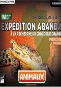W poszukiwaniu pomarańczowego krokodyla