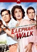 Ścieżka słoni