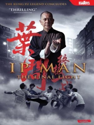 Ip Man: Ostatnia walka