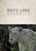 Białe lwice 2/2