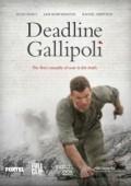 Bitwa o Gallipoli